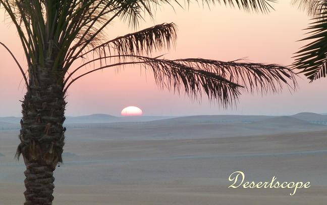 Sunrise over Arabian desert