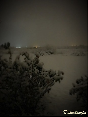 December 27th in southern New Mexico, about 3 a.m., taken with ambient light only (no flash).